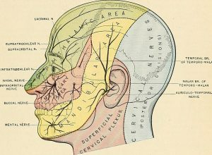 Meniere's Disease & Trigeminal Neuralgia Improved Under Chiropractic Care - Austin TX Chiropractor Headaches Migraines Head Neck Pain Dizzy